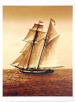 Reprodukcja Under Sail II