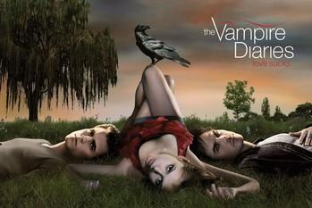 Plakát VAMPIRE DIARIES - crow