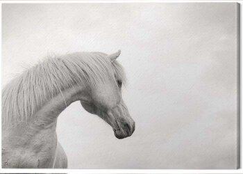 Slika na platnu Carys Jones - The Curve II