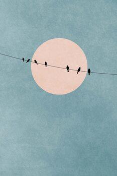 Slika na platnu The Beauty Of Silence