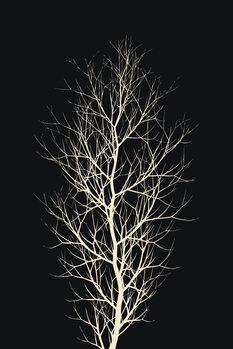 Slika na platnu The Tree WHITE