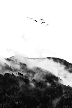Slika na platnu The Wilderness