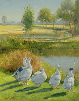 Gooseguard Slika na platnu