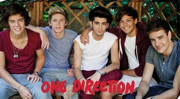 One Direction - garden Platno