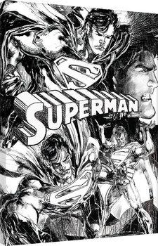 Superman - Sketch Slika na platnu
