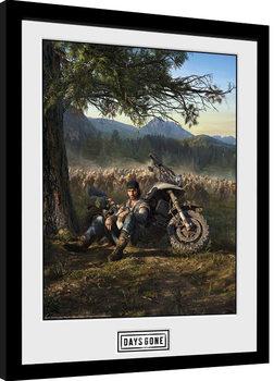 Inramad poster Days Gone - Key Art