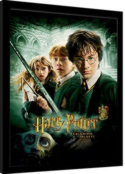 Harry Potter - Chamber Of Secrets Inramad poster