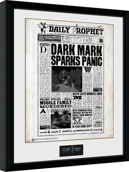 Inramad poster Harry Potter - Daily Prophet