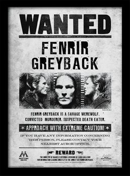 Harry Potter - Fenrir Wanted Inramad poster