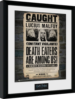 Harry Potter - Lucius Inramad poster