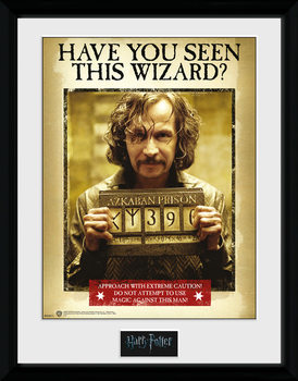 Harry Potter - Sirius Azkaban Inramad poster