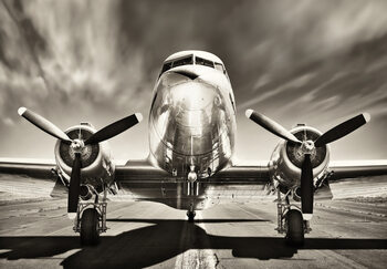 Poster Aeroplane - Monochromatic