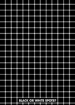 Poster Black or white spots?