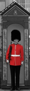 Poster Buckingham palace guard