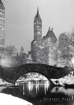Poster Central Park - 1961