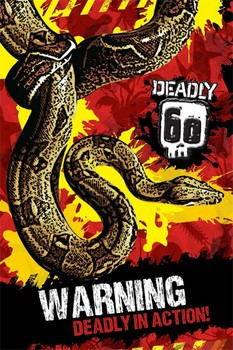 Deadly 60 - warning Poster / Kunst Poster