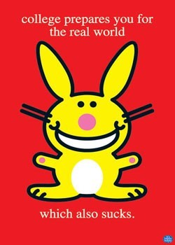 Poster Happy bunny - college sucks