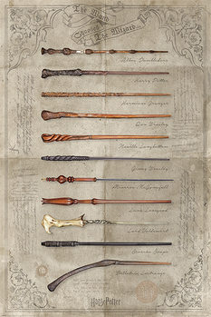 Póster  Harry Potter - The Wand Chooses The Wizard