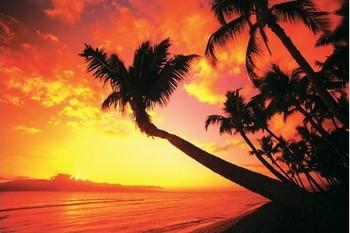 Poster Hawaiian Sunset II