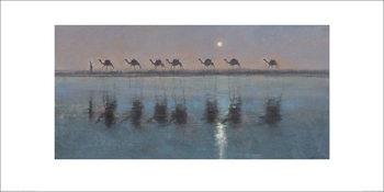 Jonathan Sanders - Jade Sea Reflections Kunstdruk
