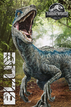Poster  Jurassic World Fallen Kingdom - Blue