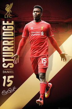 Poster  Liverpool FC - Sturridge 14/15