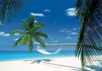 MALDIVES ISLAND - hammock Poster 3D