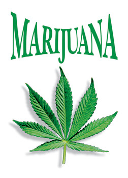 Marijuana leaf Poster