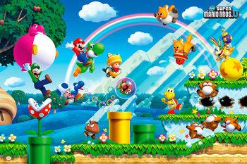 Nintendo - mario bros U Poster
