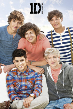 Poster One Direction - bench