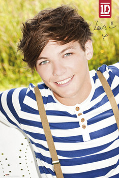 Poster ONE DIRECTION - louis