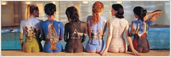 Póster  Pink Floyd - back catalogue