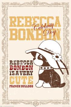 REBECCA BONBON - celebrity dog poster, Immagini, Foto