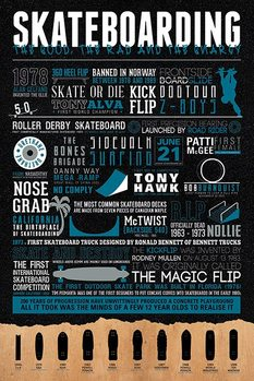 Poster Skateboarding - The Good, The Rad & The Gnarly