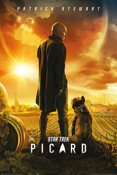 Póster Star Trek: Picard - Picard Number One