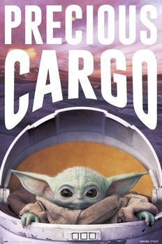 Póster Star Wars: The Mandalorian - Precious Cargo