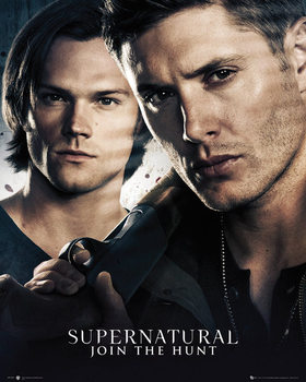 Poster Supernatural - Brothers
