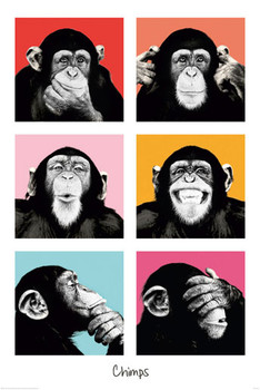 THE CHIMP - pop Poster / Kunst Poster