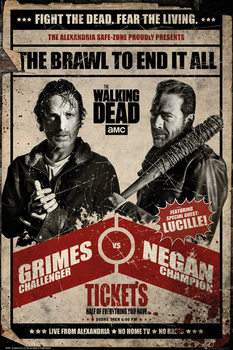 Póster  The Walking Dead - Fight