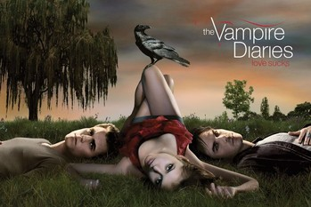 Poster VAMPIRE DIARIES - crow