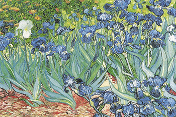 Vincent van gogh les iris poster immagini foto for Cornice poster 61x91