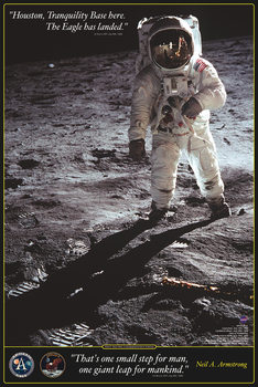 Poster Walk on the moon