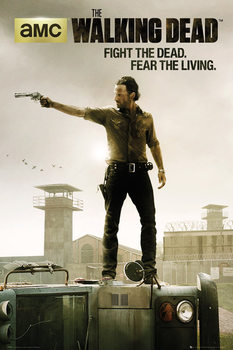 Póster  WALKING DEAD - season 3