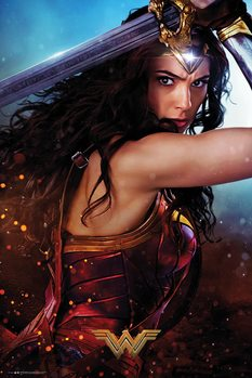 Póster  Wonder Woman - Defend