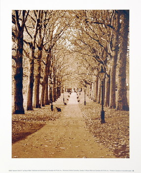 Autumn Stroll II Reproducere