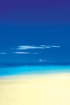 Barbuda Beach Poster