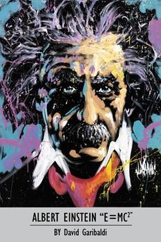 David Garibaldi - Albert Einstein Poster