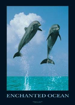 Enchanted ocean Poster
