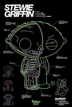 FAMILY GUY - stewie x-ray Poster