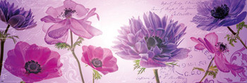 Flowers in purple Poster